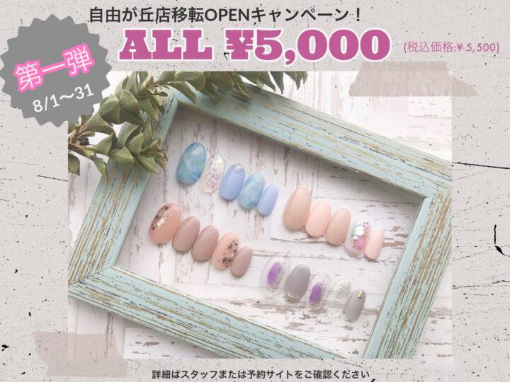 夏ネイル4デザインがALL5,000円(税込5,500円)の画像