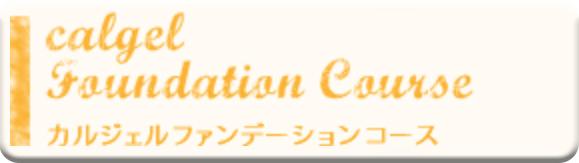 カルジェルファンデーションコース講習料 ¥86,400(税込)