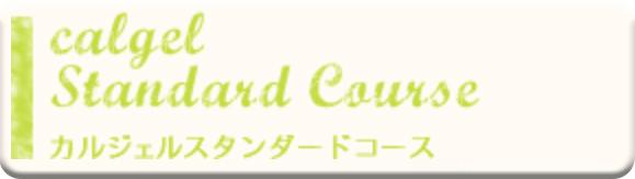 カルジェルスタンダードコース講習料 ¥64,800(税込)